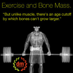 exercise and bone mass