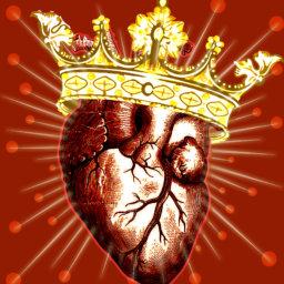 Heart and Immunomodulation