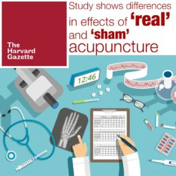 sham vs. real acupuncture